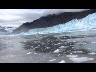 Greatest Glacier Calving Ever!!! Whole Face Falls Down And Pops Back Up While People Freak Out!!