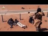 Расстрел людей в Сирии 18+ (Kills truck drivers in Syria +18)