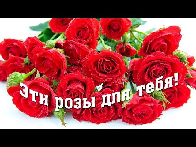 ЭТИ РОЗЫ ДЛЯ ТЕБЯ (красивая песня о любви)