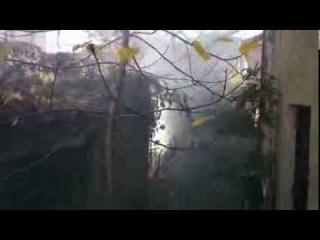 04.11.2015 10:53 Спалення листя на вул. Острозького (поблизу зупинки громадського транспорту)