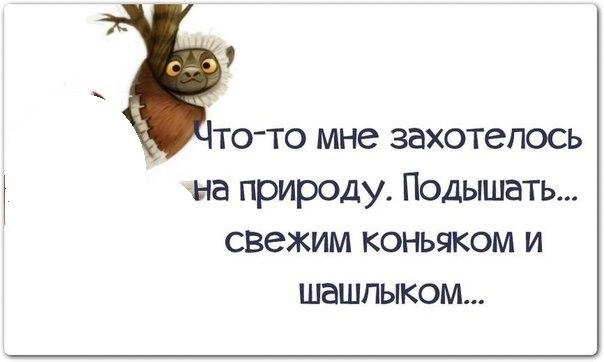 http://cs624022.vk.me/v624022137/16b33/u8LASe6UIXg.jpg