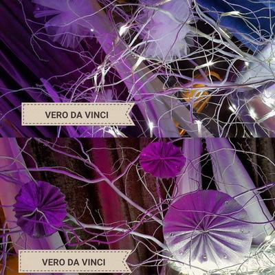 Vero-Da Vinci