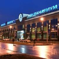 Океанариум в Санкт-Петербурге: режим работы в 2 16 г