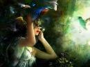 Песня о волшебном цветке / Таня Мелехина / БДХ