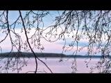 L.Bethoven_Lunnaja_sonata_-_Ludwig_Van_B