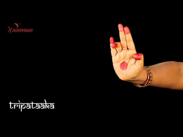 Bharatanatyam Learn Asamyuta Hasta HD Video Lesson for Beginners