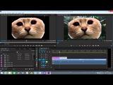 Adobe Premier Pro CC Монтаж Для Начинающих Часть 2