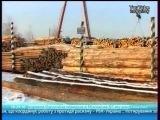 220212 Лесной патруль-позорный пиар украинских лесников