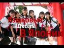 Языковые школы в Японии ( Учебная Виза)