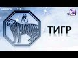 Китайский Гороскоп на ТВ3 - Тигр (3 Серия от ASHPIDYTU в 2015)