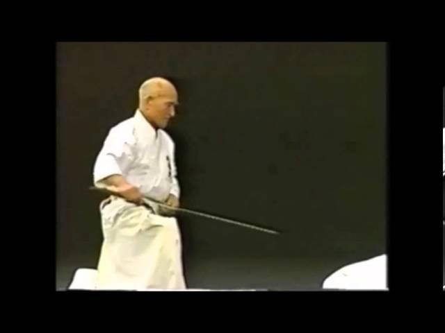 Hakuo Sagawa - Muso Shinden-ryu Eishin-ryu (detailed)