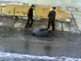 киргиз в копыле после дождя