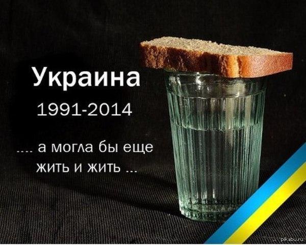9 украинских Героев освобождены из плена террористов - Цензор.НЕТ 8315