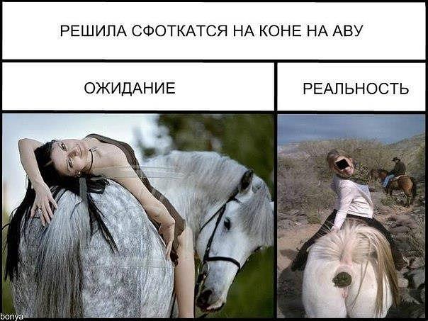 Смешная картинка на аватарку для девушек