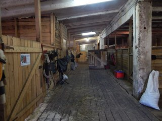 Прогулки на лошадях ТОКСОВО! | ВКонтакте