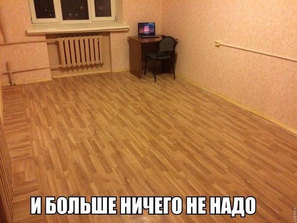 f6lHbiGrcLg.jpg