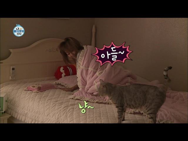 【TVPP】Hyorin(SISTAR) - Aegyo for Cats, 효린(씨스타) - 아들~ 잘 잤쪄? 어디에서도 볼 수 없었던 효린의 5