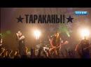 Тараканы концерт в Минске 23.03.2015. Полная версия