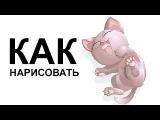 Рисунки котят карандашом. КАК поэтапно НАРИСОВАТЬ КОТЕНКА