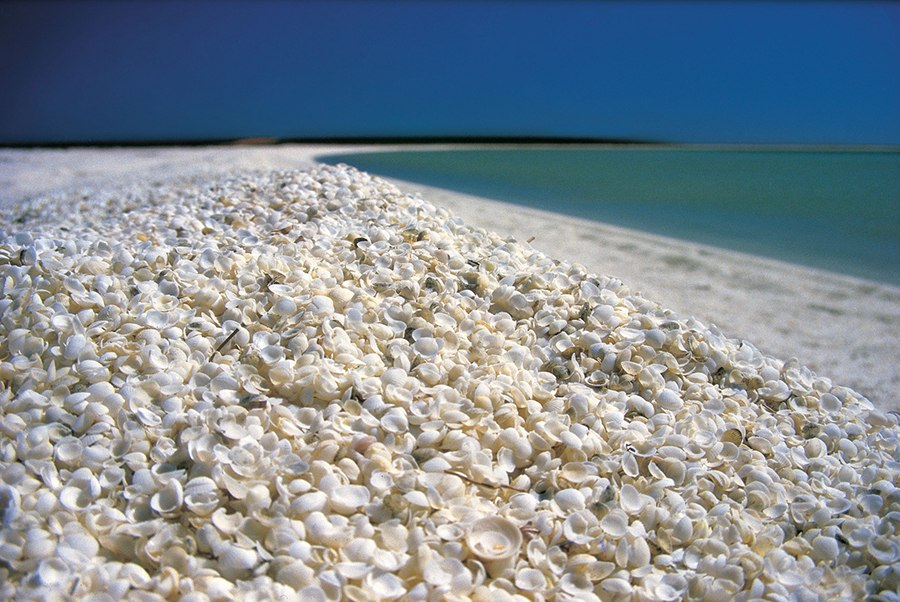 Австралия пляж