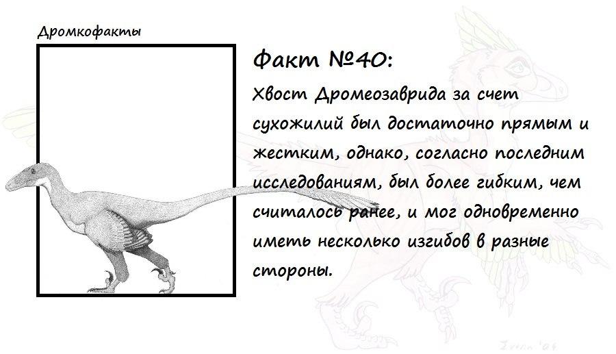 https://pp.vk.me/c624029/v624029874/6e83/E5oFB2kRW-g.jpg