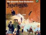 Quantic Soul Orchestra. Tropidelico