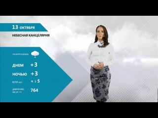НЕБЕСНАЯ КАНЦЕЛЯРИЯ С ОЛЬГОЙ САВИНОВОЙ 12.10.15