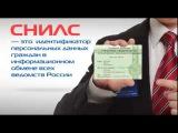 Пенсионный Фонд России: СНИЛС