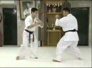 Using Gedan Mawashi Geri (low roundhouse kick) for Takedowns - Matsui Kancho