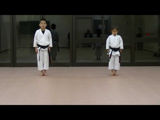 JKA Mahiro Masaki practice Heian shodan-godan and Tekki shodan part 1