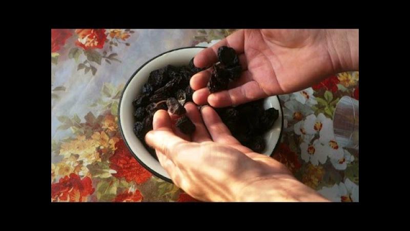 Как хранить чернослив в домашних условиях на зиму