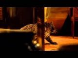 Yves Saint Laurent, Opium Perfume