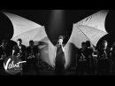 Live Ёлка - Тело офигело Большой концерт, 2014 г.