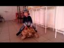 покатай меня большая черепаха...