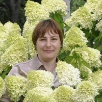 Анкета Светлана Александрова