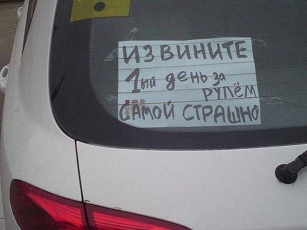 http://cs624116.vk.me/v624116798/17252/B6xiOTMptIA.jpg
