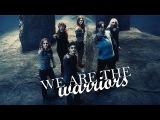 Harry Potter - Warriors