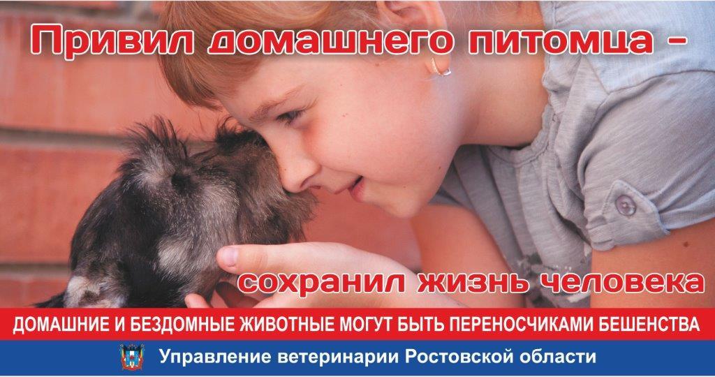 Ветеринарная служба Ростовской области запустила социальную рекламу