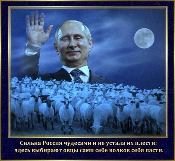 США решительно поддерживают Украину. РФ должна прекратить беспощадную кампанию агрессии, - Пайетт - Цензор.НЕТ 1469