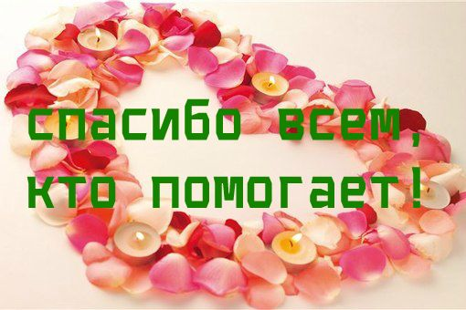 https://pp.vk.me/c624117/v624117750/c56e/C-j-J-JYjUs.jpg