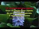 Валерий Залкин - Одинокая Ветка Сирени караоке