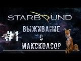 Starbound выживание co-op 1 серия. [MakcKolsor][Канал Чувака!].