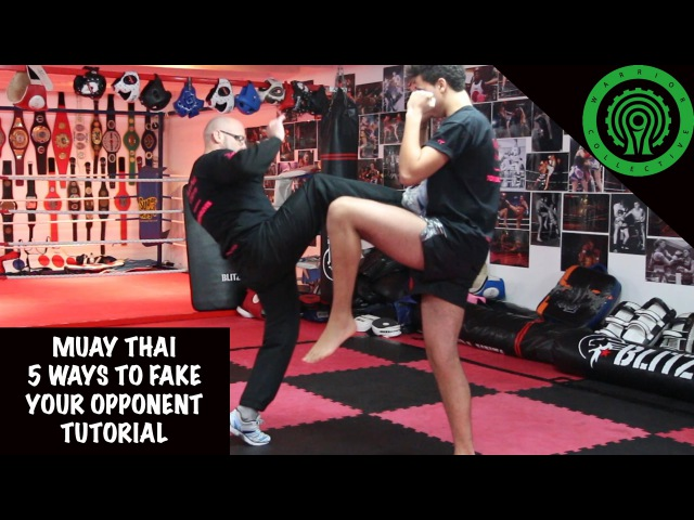 Muay Thai 5 Ways to Fake your Opponent Tutorial