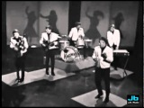 The Kingsmen - Louie, Louie (Shindig 1965)