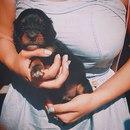 Маро Кекс фото #42