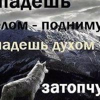 Анкета Михаил Трегубов