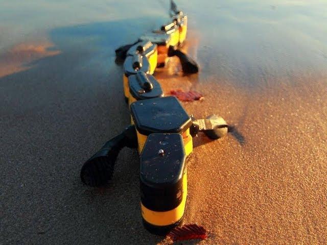 Salamandra Robotica II Robot Walking and Swimming