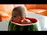 Прелестный ребенок ест арбуз изнутри