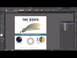 Infographic tutorial after effects