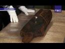 """Самая древняя в мире деревянная скульптура - Шигирский идол - """"постарела"""" на 1,5 тыс. лет"""